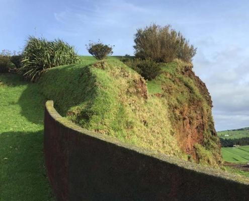 Azores green