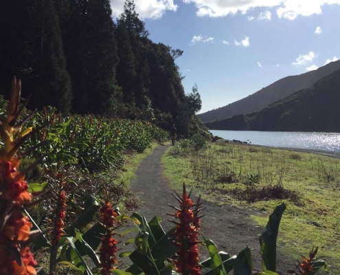 Azores red, green and blue