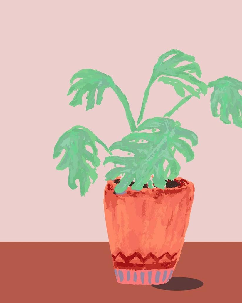 digital illustration - my favourite plant