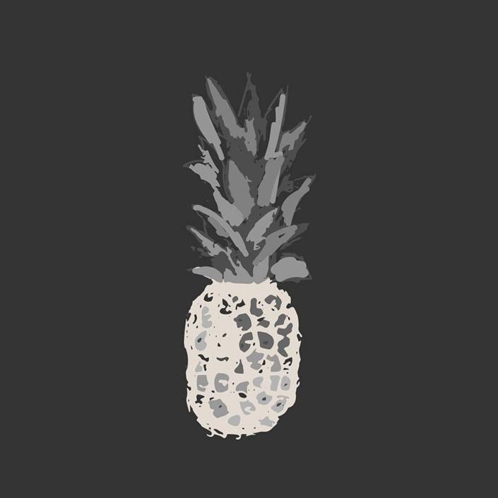 digital illustration - ananas no text