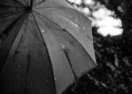 Umbrella and rain - Dutch summer