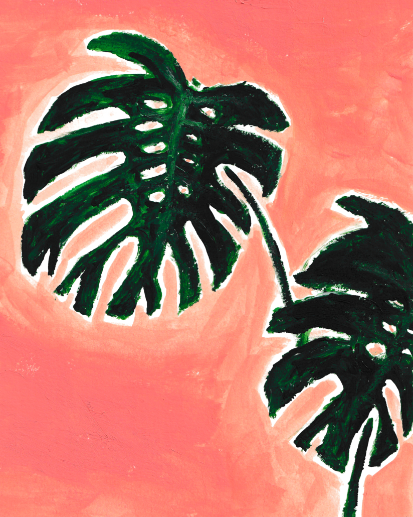 Painting of a monstera plant - designsoup by alix