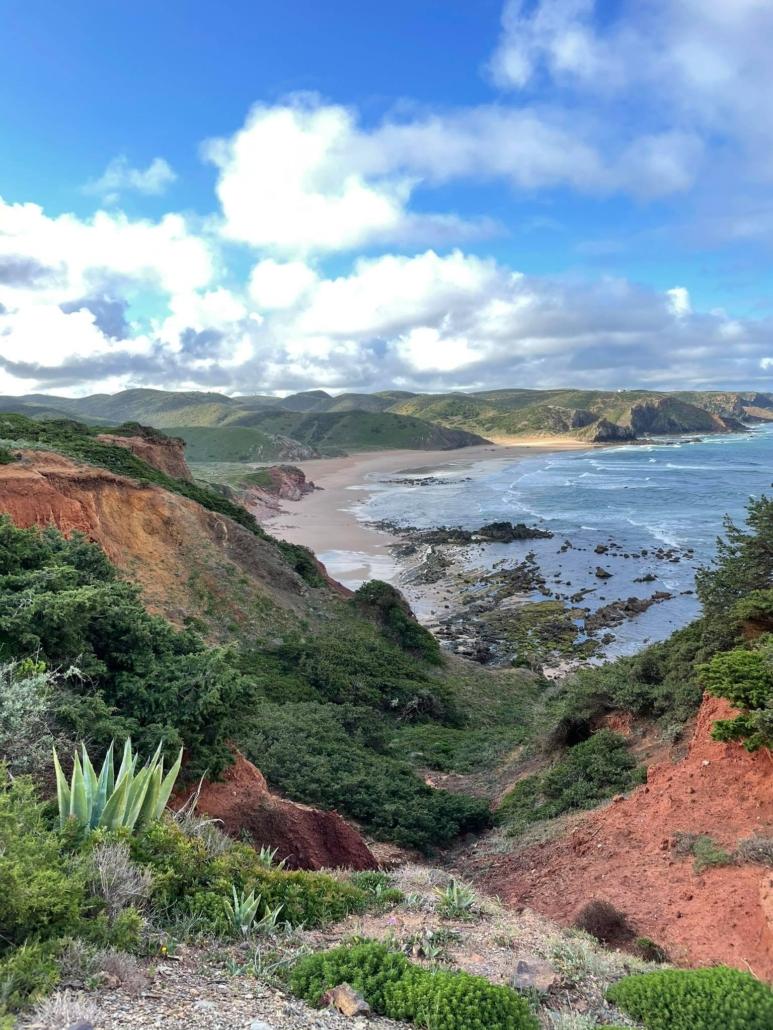 ocean view through cliffs, vegetation - finding inspiration