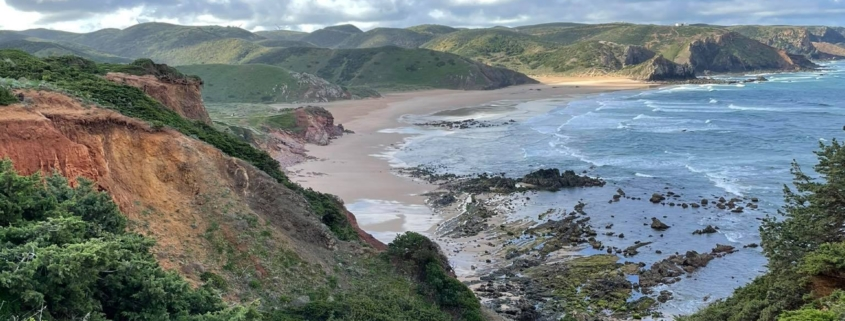ocean view through cliffs, vegetation